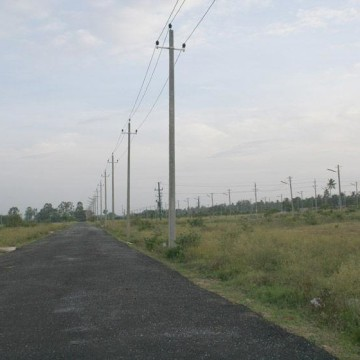 A soon-to-be-lost bird habitat in the outskirts of Bangalore City